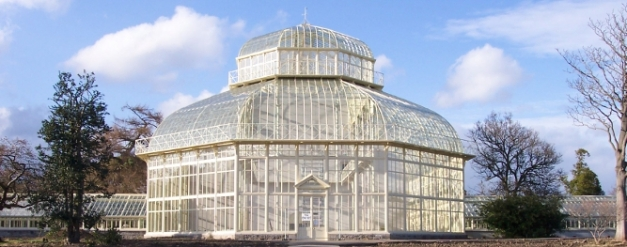 palm-house-botanic-gardens-003
